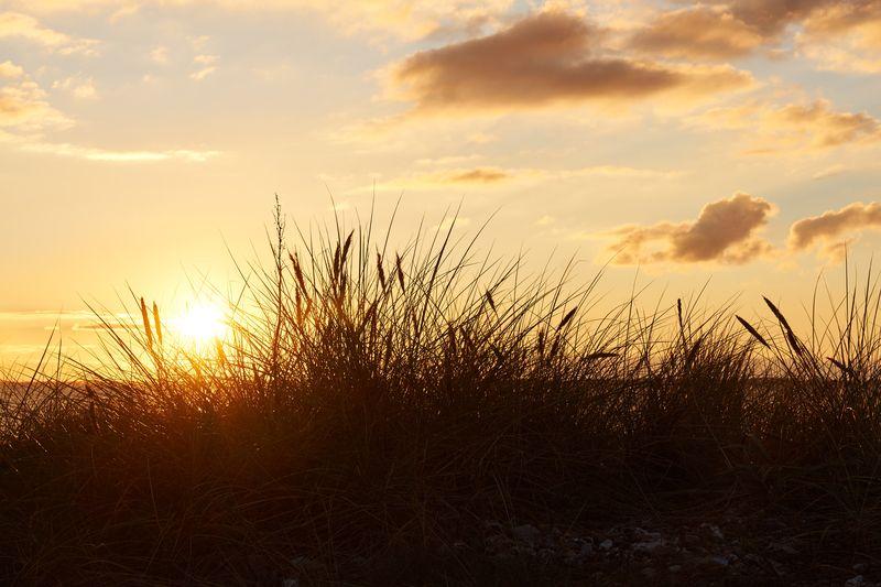 Das perfekte Timing: Plant schon jetzt euren nächsten Dänemarkurlaub